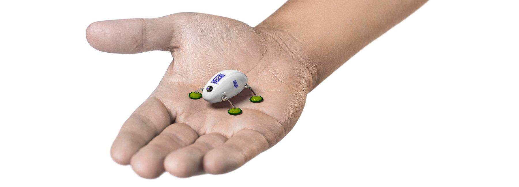 робот-лебарка